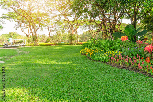 Photo Smooth green grass lawn in good care maintenance garden, flowering plant, shrub