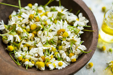 Dried Chamomile Flowers In Woo...