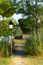 A Romantic Path With A Street Light, Flowers And A River