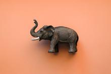 Toy Elephant On Orange Backgro...
