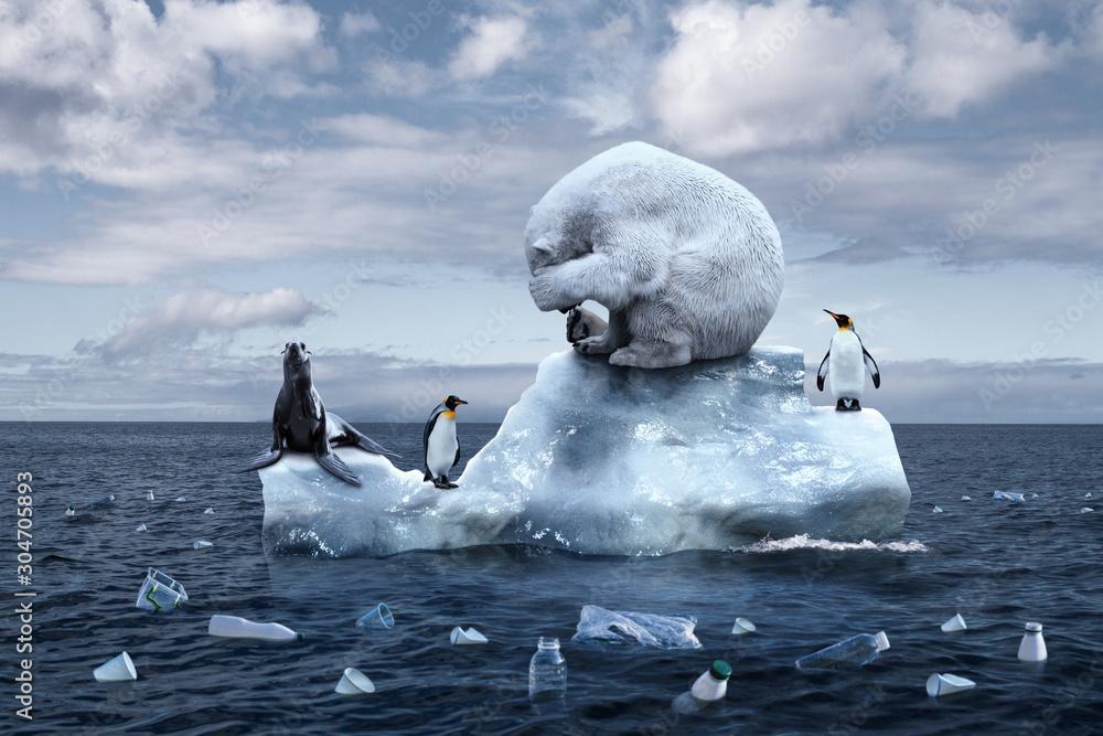 Fototapeta polar bear sits on a melting glacier
