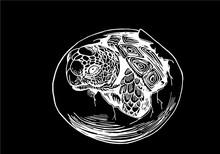 Graphical Sketch Of Tortoise In Egg Isolated On Black Background,vector Engraved Illustration