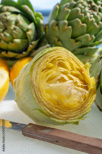 Preparation of heads of fresh raw artichokes plants from artichoke plantation in Canvas Print