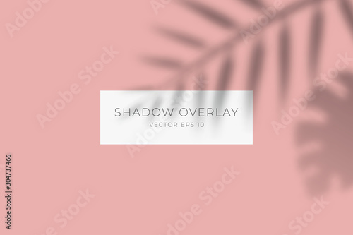Obraz Transparent shadow overlay effect for branding. Palm leaf drop shadow on flat surface. Background for your design. Vector eps 10. - fototapety do salonu