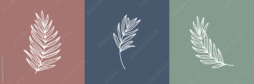 Fototapeta Set of tropical leaves. Outline Palm leaf and Olive Branch In a Modern Minimalist Style. Vector Illustration. For printing on t-shirt, Web Design, beauty Salons, Posters, creating a logo and other