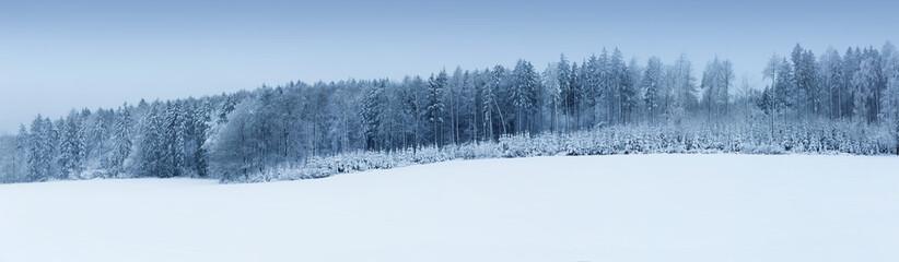 Panorama verschneiter Winter Wald, blauer Himmel