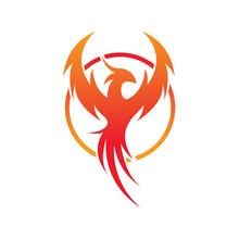 Flying Phoenix Fire Bird Abstract Logo Design Vector Template. Circle Dove Eagle Logotype Concept Icon. Vector High Quality Design