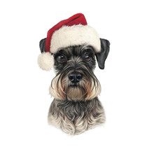 Dog In Santa Hat Isolated On W...