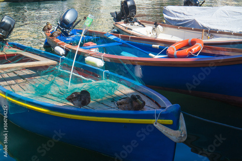 anatre in porto sopra una barca da pesca Wallpaper Mural