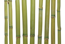 Bamboo Bars Isolated On White Background And Texture