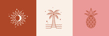 Vector Logo Design Template With Palm Tree And Sun