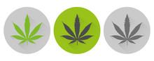 Cannabis Leaf Icon Round Symbo...