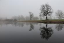 Nebellandschaft Im November - November Misty Landscape