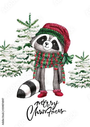 Fotografie, Obraz Christmas Woodland Cute forest cartoon raccoon, bear animal character