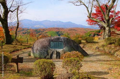 モミジ・秋の霞ヶ城公園(福島県・二本松市)