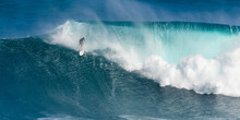 Surfer On Jaws