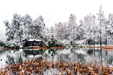 The Beautiful Snow Winter Landscape Scenery Of Xihu West Lake And Pavilion With Garden In Hangzhou China.