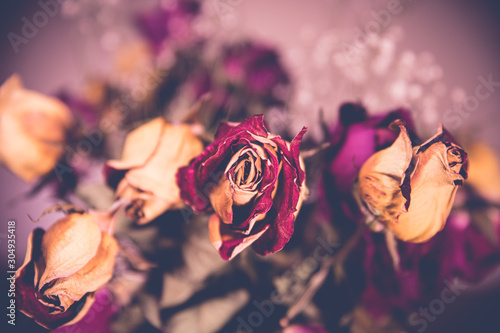 A bouquet of wilted, dry roses in a vase Wallpaper Mural