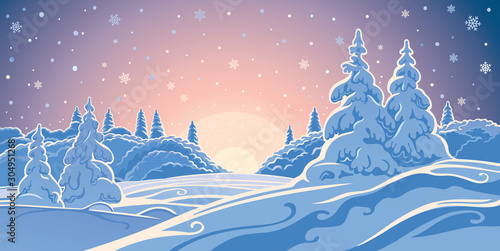 Fotomural  Winter landscape evening forest and snow-covered trees in the foreground