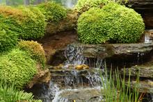 Green Nature Garden Decoration...