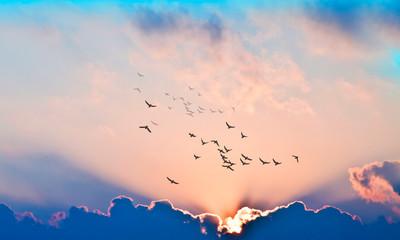 puesta de sol con rayos de luz entre las nubes