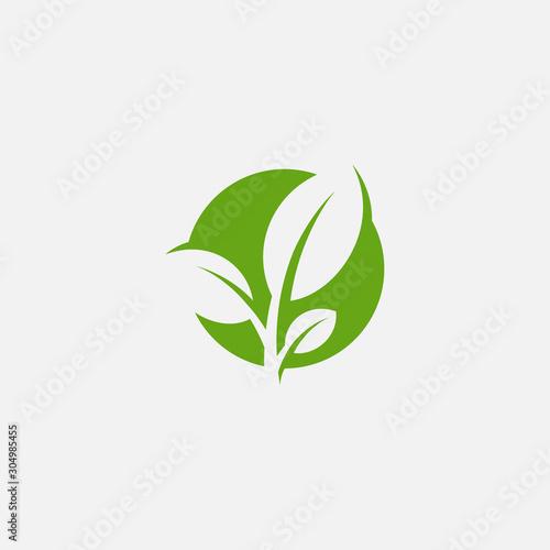 Fototapeta Green leaf ecology nature element vector icon, Leaf Icon, green leaf ecology nature element vector obraz