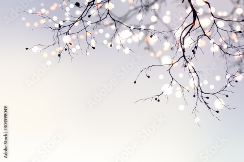 Obraz Christmas garland glitters and sparkles on a tree branch. Festive blurred background. Light abstract pearl matte texture. - fototapety do salonu