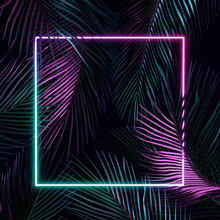 Tropical Leaves With Violet And Blue Neon Light. 3d Rendering