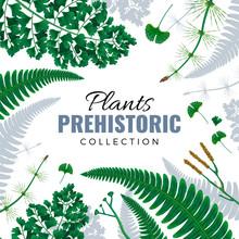 Prehistoric Plants Frame