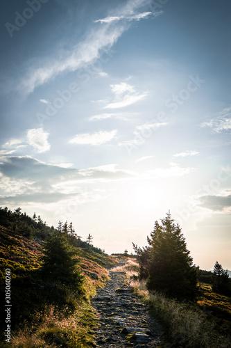 Obraz na plátně  The view of the rock formation called Czeskie Kamienie / Muzske Kameny in the Ka