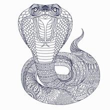 Stylized Cobra  In Ethnic Vector