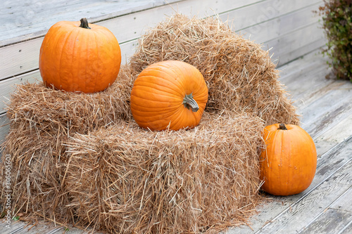 Photo Three yellow pumpkins lies on hay bales