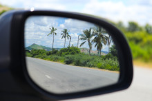 Natural Scenic Palm Trees Road...