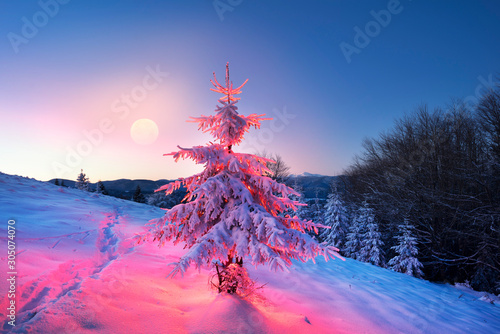 Holiday Illumination in the mountains Wallpaper Mural