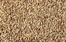Oats Grain Peel Background And...