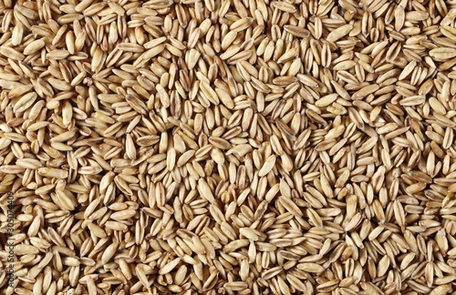 Fototapeta Oats grain peel background and texture, top view obraz