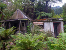 Run Down Ramshackle Shed In Th...