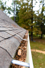 Gutter On Home Full Of Leaves And Pinestraw