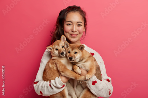 Happy korean female dog owner shows her family members, stands with two adorable pedigree puppies, bought hunting shiba inu dogs, spend time at home Canvas Print