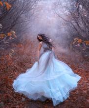 Beautiful Fantasy Woman Spinni...