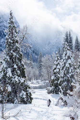 Fotobehang Winter landscape with snow covered trees