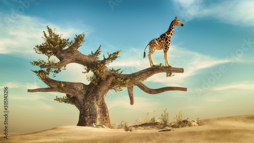 Giraffe on a tree. This is 3d render illustration Wallpaper Mural