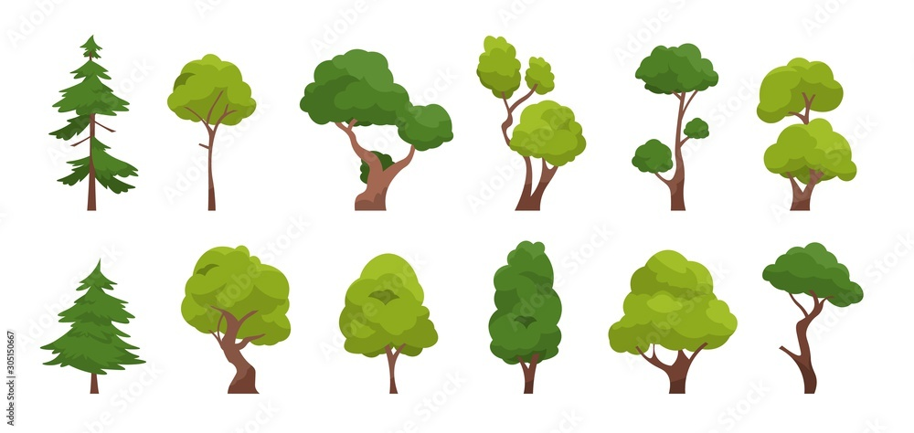 Fototapeta Cartoon tree. Simple flat forest flora, coniferous and deciduous meadow trees, oak pine Christmas tree isolated plants. Vector set illustration agricultural garden and nature park plant