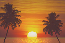Tropical Palm Tree And Sea Sun...