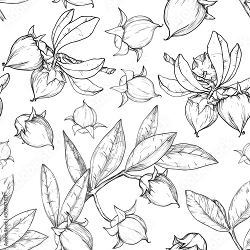 Samless monochrome pattern with jojoba nuts, branch and fruit. Tablou Canvas