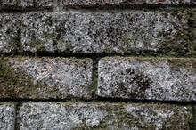 Rough Stone Brick Wall With Li...
