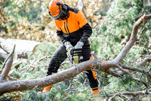 Lumberman In Protective Workwear Sawing Branches With A Chainsaw From A Felled Tree In The Pine Forest. Concept Of A Professional Logging