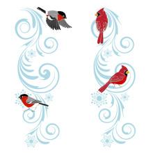Christmas Ornament And Birds C...