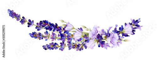 Fototapeta Picturesque arrangement of lavender and bluebells hand drawn in watercolor isolated on a white background. Floral watercolor illustration. Ideal for creating invitations, greeting and wedding cards. obraz