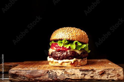 grilled burger on a stone background Canvas Print